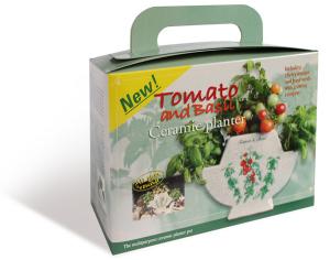 TomatoVerpakk.4