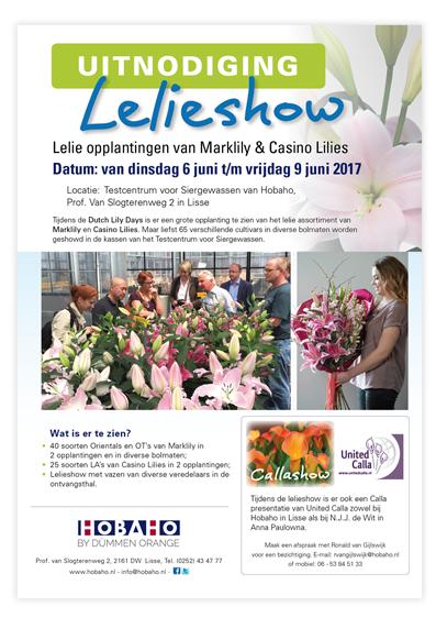 Flyer-Lelieshow2017